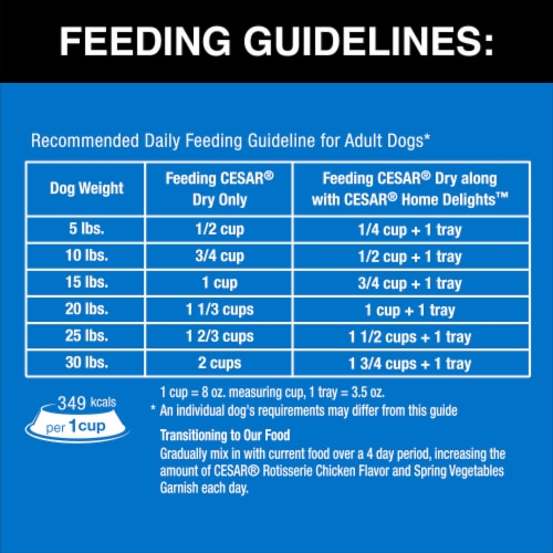 Cesar Rotisserie Chicken Flavor Dry Dog Food Perspective: back