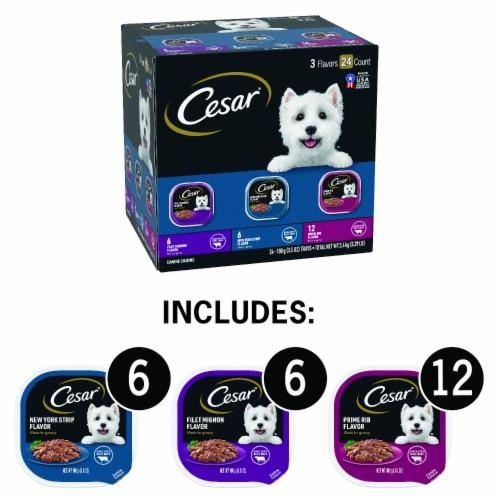 Cesar Filets in Gravy Wet Dog Food Variety Pack Perspective: back