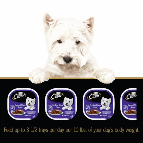 Cesar Dry-Aged Ribeye Flavored Classic Loaf in Sauce Wet Dog Food Perspective: back