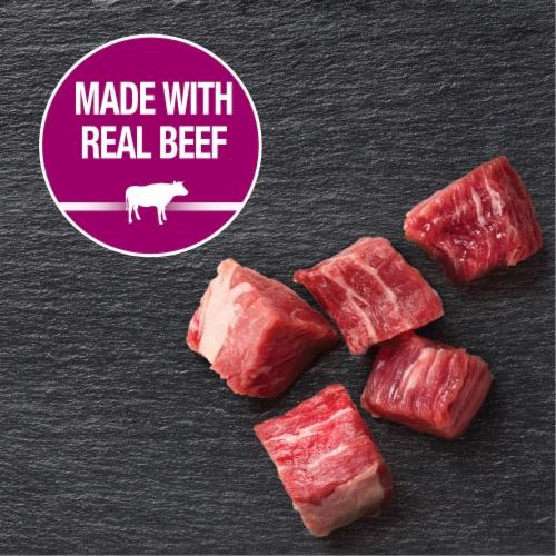 Cesar Filets in Gravy Prime Rib Flavor Wet Dog Food Perspective: back