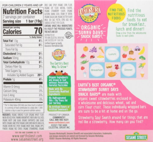 Earth's Best Organic® Sunny Days Strawberry Snack Bars 8 Count Perspective: back