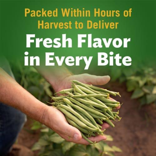 Del Monte® No Salt Added Fresh Cut Green Beans Perspective: back