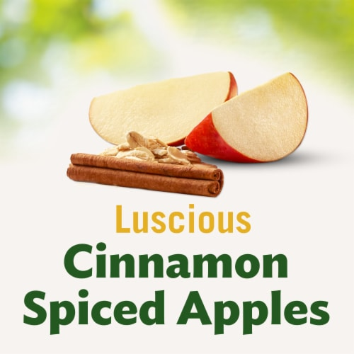 Del Monte Fruit & Oats Apple Cinnamon Cups 2 Count Perspective: back