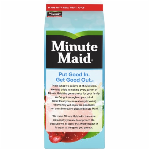Minute Maid® Fruit Punch Juice Drink Perspective: back