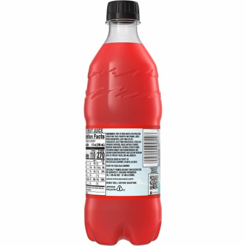 Minute Maid Fruit Punch Fruit Juice Drink Perspective: back