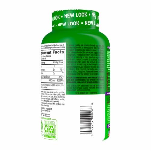 Vitafusion Extra Strength Biotin Gummies Perspective: back