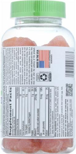 Vitafusion Power Zinc Natural Strawberry Tangerine Dietary Supplement Gummies Perspective: back