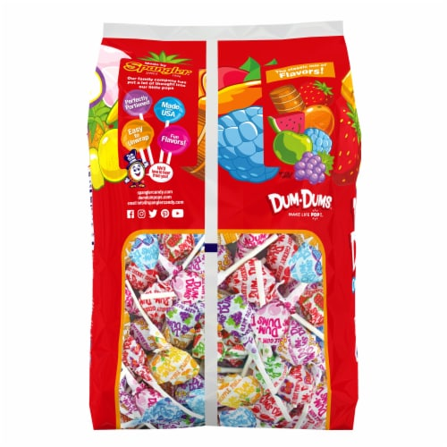 Dum Dums Original Assorted Flavor Lollipops 300 Count Perspective: back