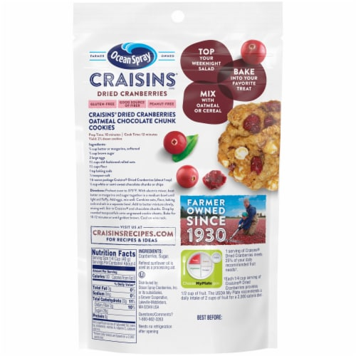 Ocean Spray Original Craisins Perspective: back