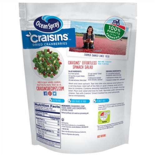 Ocean Spray Cherry Craisins Perspective: back