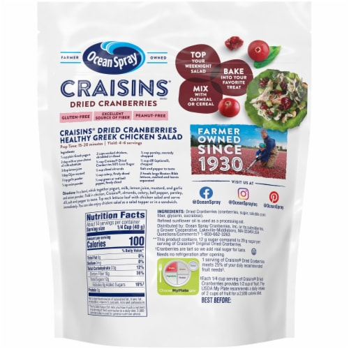 Ocean Spray Reduced Sugar Craisins Dried Cranberries Perspective: back