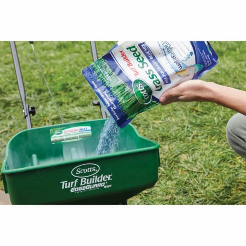 Scotts Turf Builder 3 Lb. 750 Sq. Ft. Coverage Heat Tolerant Blue Grass Seed Perspective: back