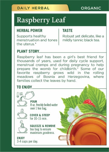 Traditional Medicinals Organic Raspberry Leaf Tea Bags Perspective: back