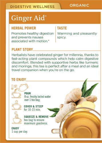 Traditional Medicinals Organic Ginger Aid Tea Bags Perspective: back