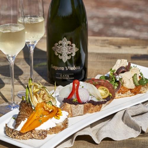Segura Viudas Brut Reserva Sparkling Wine Perspective: back