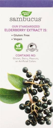 Nature's Way Sugar Free Sambucus Elderberry Syrup Perspective: back