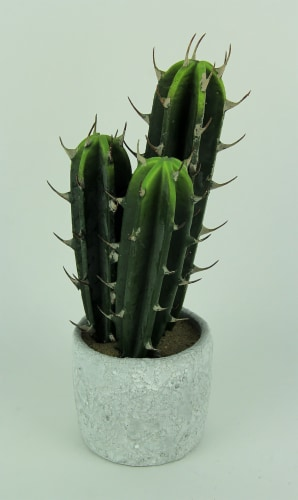 Artificial Cactus in Round Cement Planter 13 inch Perspective: back