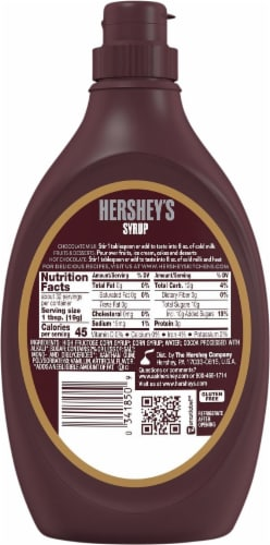 Hershey's Special Dark Mildly Sweet Chocolate Syrup Perspective: back