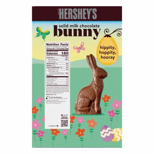 Hershey's Solid Milk Chocolate Bunny Perspective: back