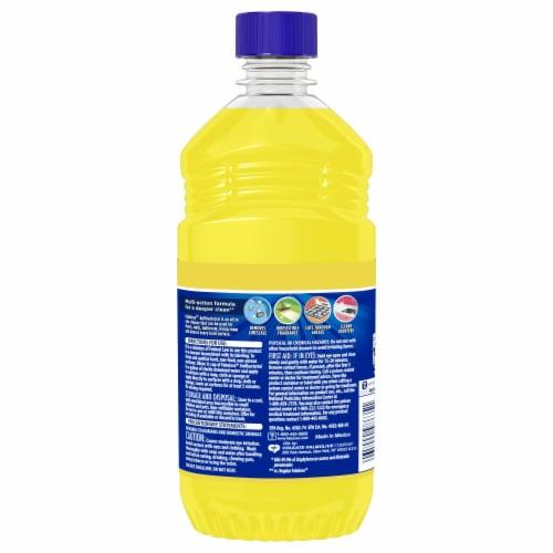 Fabuloso® Sparkling Citrus Antibacterial Multi-Purpose Cleaner Perspective: back