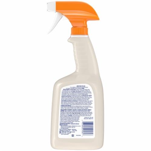 Febreze Professional Sanitizing Fabric Refresher Perspective: back