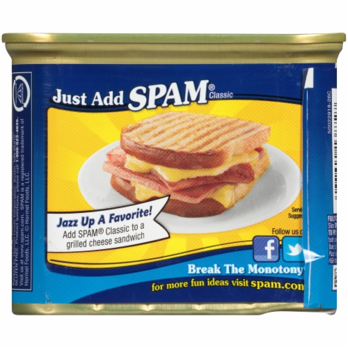 Spam Classic Canned Meat Perspective: back