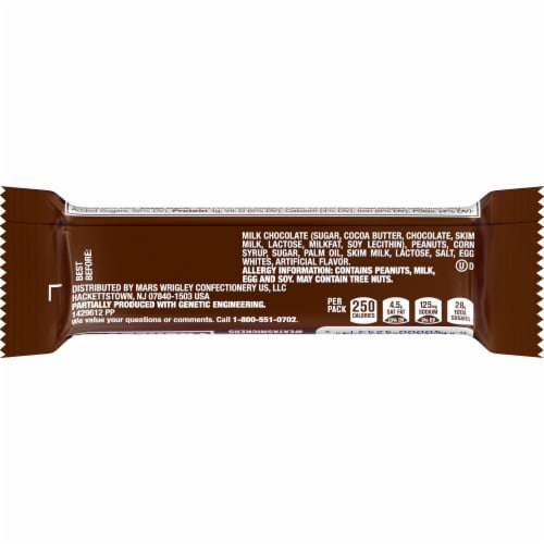 Snickers Chocolate Candy Bar Perspective: back