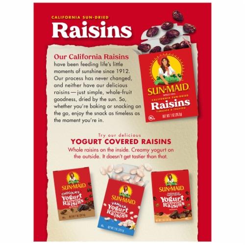 Sun-Maid Natural California Raisins Perspective: back