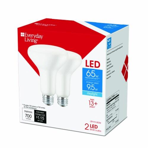 Everyday Living® 9.5-Watt(65-Watt) BR30 LED Light Bulbs Perspective: back
