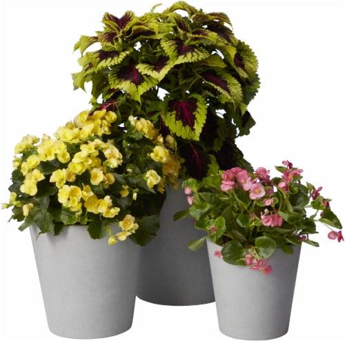 The Joy of Gardening Planter Set - Gray Perspective: back