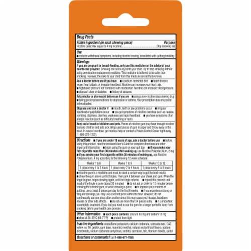 Kroger® Coated Fruit Wave Nicotine Gum 4mg Perspective: back