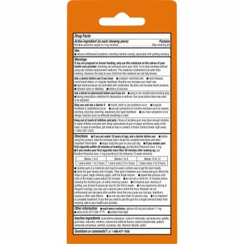 Kroger® Coated Fruit Wave Nicotine Gum 2mg Perspective: back