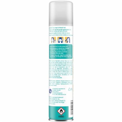 Kroger® Light & Clean Sheer Dry Shampoo Perspective: back