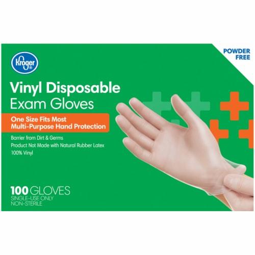 Kroger® Powder-Free Vinyl Disposable Exam Gloves Perspective: back
