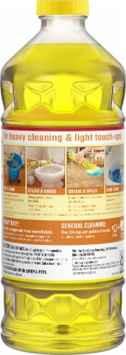 Pine-Sol Lemon Fresh Multi-Surface Cleaner & Deodorizer Perspective: back