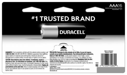 Duracell® AAA Alkaline Batteries Perspective: back