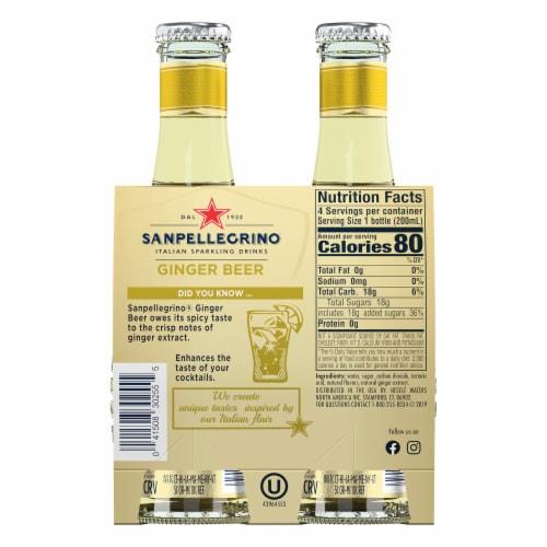 S. Pellegrino Ginger Beer Perspective: back