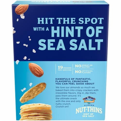 Blue Diamond Sea Salt Almond Nut-Thins Crackers Perspective: back