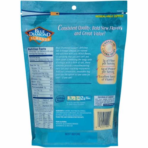 Blue Diamond Bold Salt 'N Vinegar Almonds Perspective: back