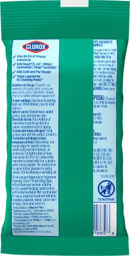 Clorox® To Go Fresh Scent Disinfecting Wipes Perspective: back