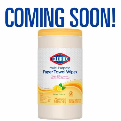 Clorox Lemon Verbena Scent Multi-Purpose Paper Towel Wipes Perspective: back