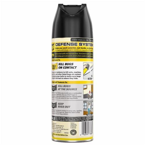 Raid® Multi Insect Killer Aerosol Spray Perspective: back
