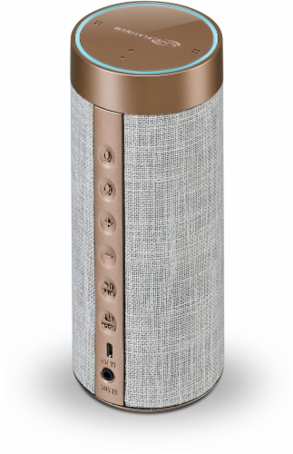 iLive Platinum Wi-Fi Speaker with Amazon Alexa - Rose Gold/Gray Perspective: back