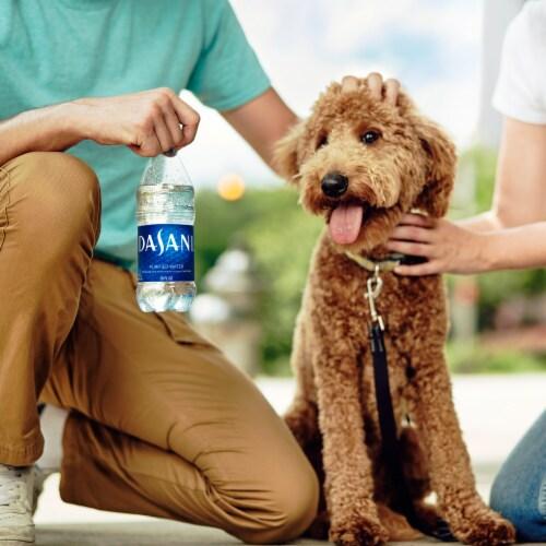 Dasani Purified Water Perspective: back