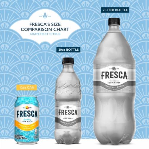 Fresca Grapefruit Citrus Sparkling Soda Water Fridge Pack Perspective: back