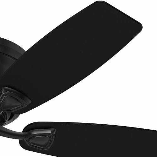 """Hunter Sea Wind Low Profile 48"""" Indoor/Outdoor Ceiling Fan w/ Pull Chain, Black Perspective: back"""