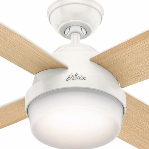 Hunter Fan Company 59217 Dempsey 52 Inch Modern Home Ceiling Fan w/ Light, White Perspective: back