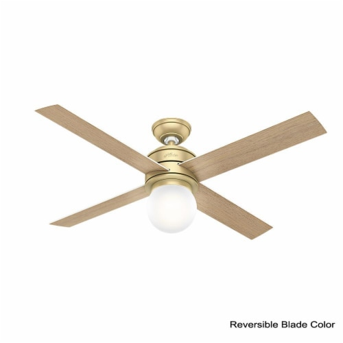 """Hunter Hepburn 52"""" Indoor Ceiling Fan with LED Lights with Switch, Modern Brass Perspective: back"""