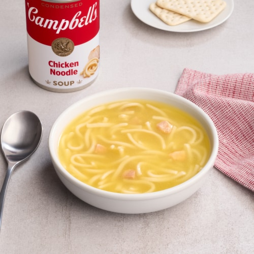 Campbell's Condensed Chicken Noodle Soup Perspective: back