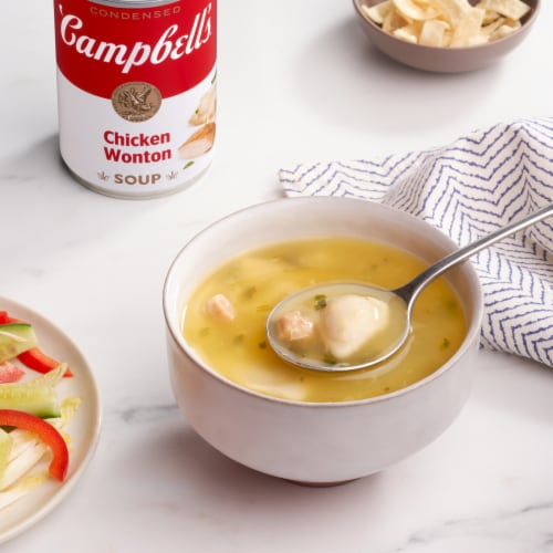 Campbell's Chicken Won Ton Condensed Soup Perspective: back